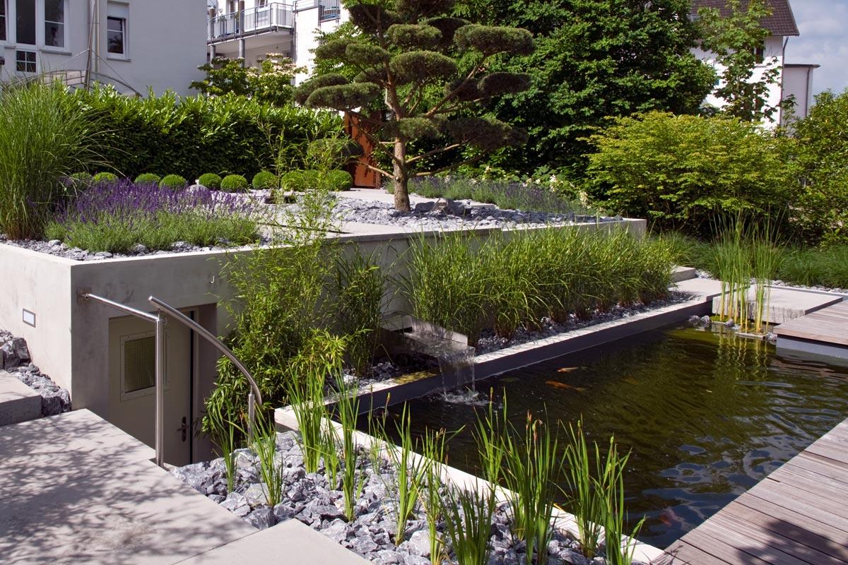 Teichanlagen strenger garten und landschaftsbau - Gartenteich mit wasserfall ...